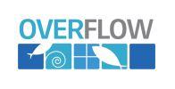 Logo Overflow